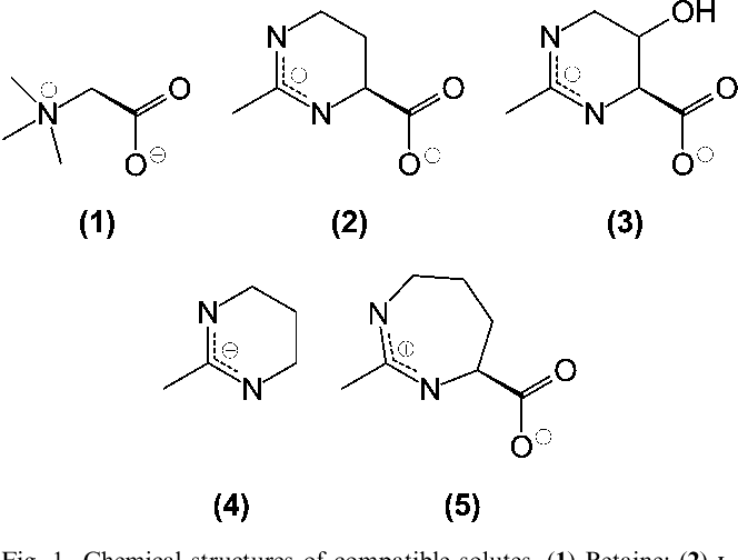 Characterization Of The Synthetic Compatible Solute Homoectoine As A