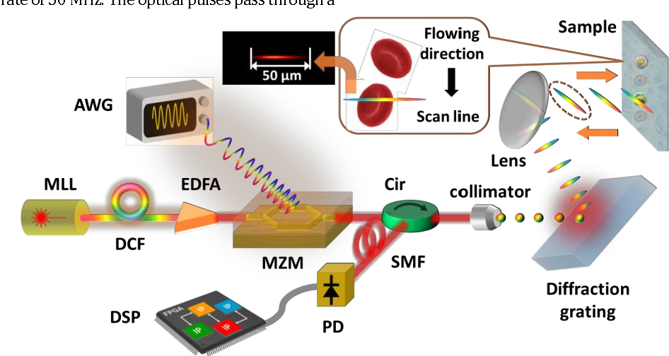 Figure 2 for High-speed real-time single-pixel microscopy based on Fourier sampling