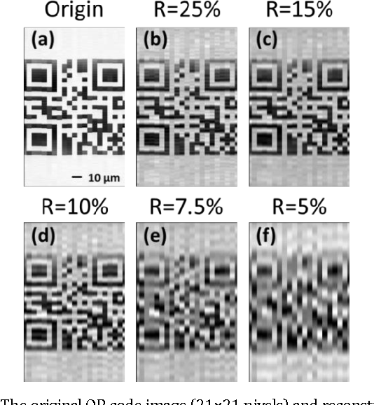 Figure 4 for High-speed real-time single-pixel microscopy based on Fourier sampling