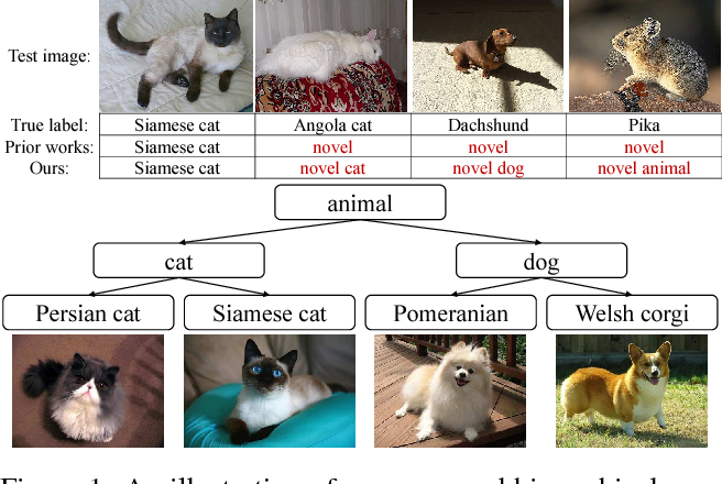 Figure 1 for Hierarchical Novelty Detection for Visual Object Recognition