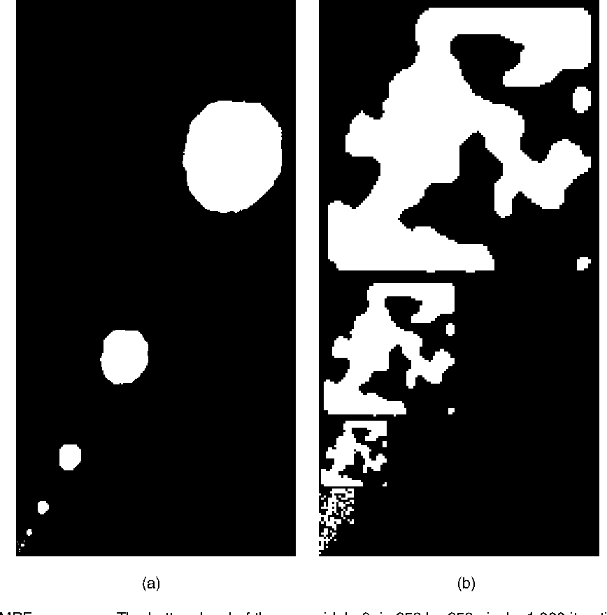 Fig. 3. Samples from two MMRF processes. The bottom level of the pyramid, k=8, is 256 by 256 pixels. 1,000 iterations were used at each level. (a) has stronger neighbor interaction than (b).