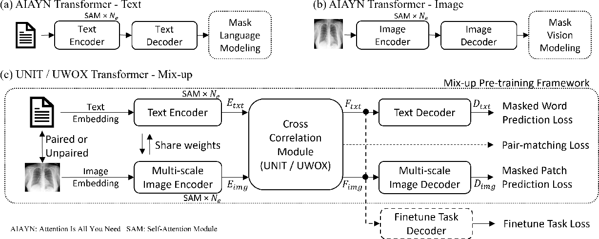 Figure 3 for Self-supervised Image-text Pre-training With Mixed Data In Chest X-rays