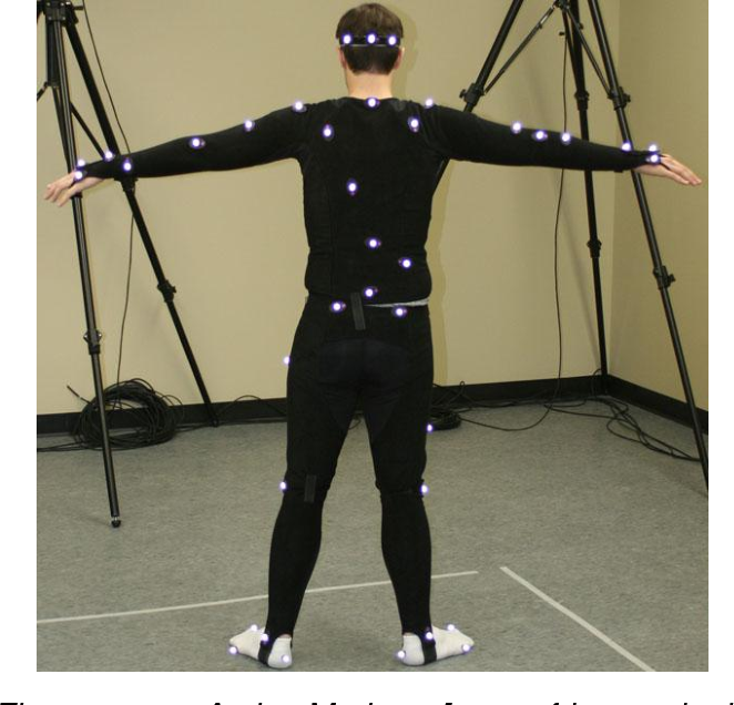 PDF] Marker-less motion capture for biomechanical analysis using the