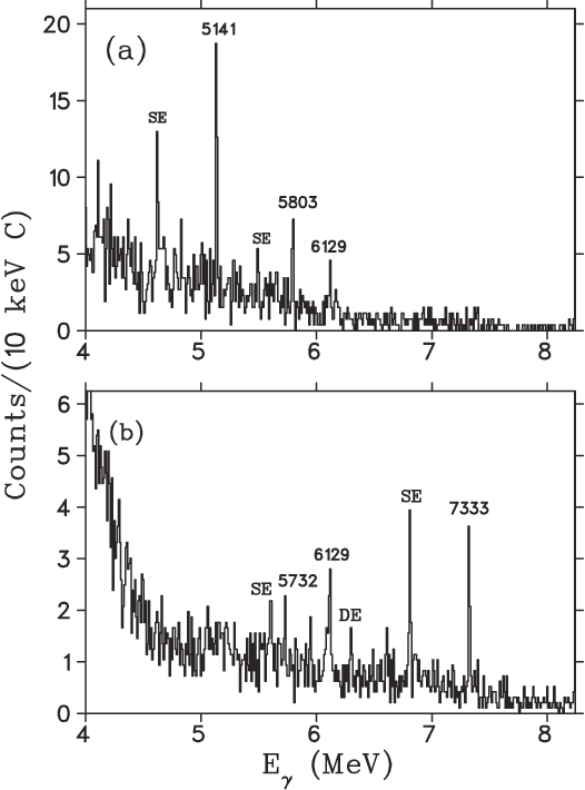 FIG. 11. Summed gamma-ray spectra for (a) Ep = 288 keV and (b) Ep = 213 keV. SE and DE indicate single- and double-escape peaks, respectively.