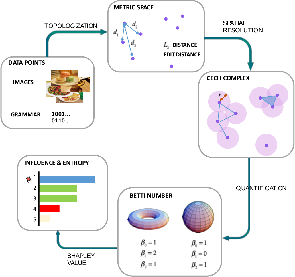 Figure 1 for Shapley Homology: Topological Analysis of Sample Influence for Neural Networks