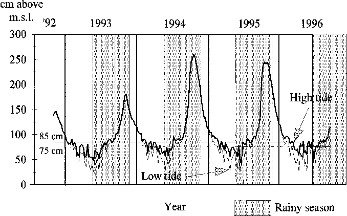 Fig. 2. Water level at low and high tides in canal `̀ 2000'', 1992±1996.