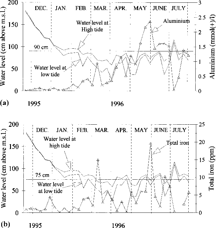 Fig. 4. Water level and changes in chemical characteristics in canal `̀ 2000'', 1995±1996: (a) soluble aluminium; (b) total iron.