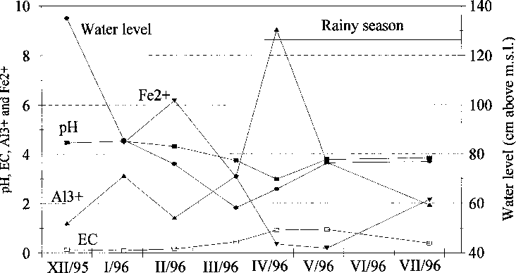 Fig. 5. Water table level and changes in soil chemical characteristics, 1995±1996. EC in mS cmÿ1, extractable aluminium in meq per 100 g and ferrous iron in ppm 1000 ppm. Bulking of 10 samples before analysis.