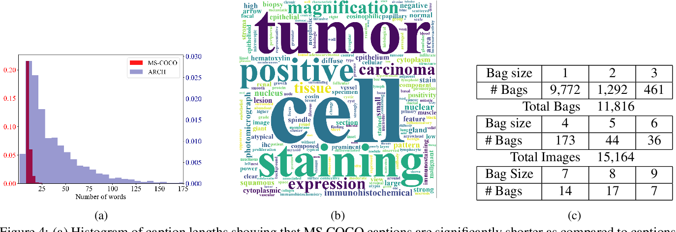 Figure 4 for Multiple Instance Captioning: Learning Representations from Histopathology Textbooks and Articles