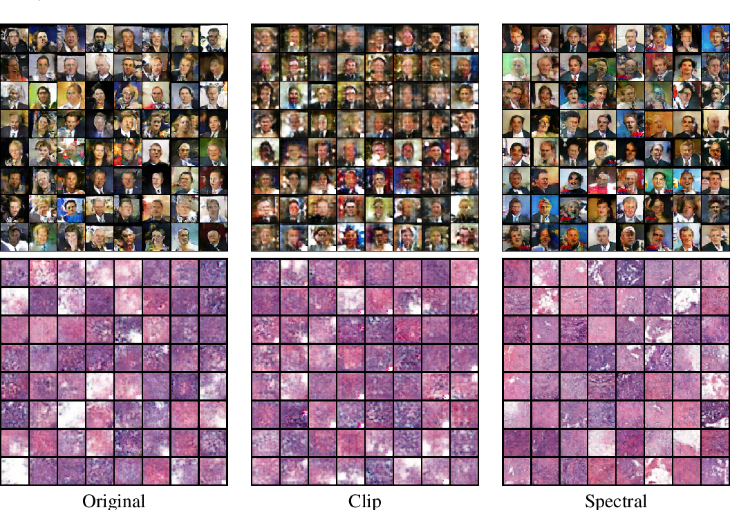 Figure 4 for Generalization in Generative Adversarial Networks: A Novel Perspective from Privacy Protection