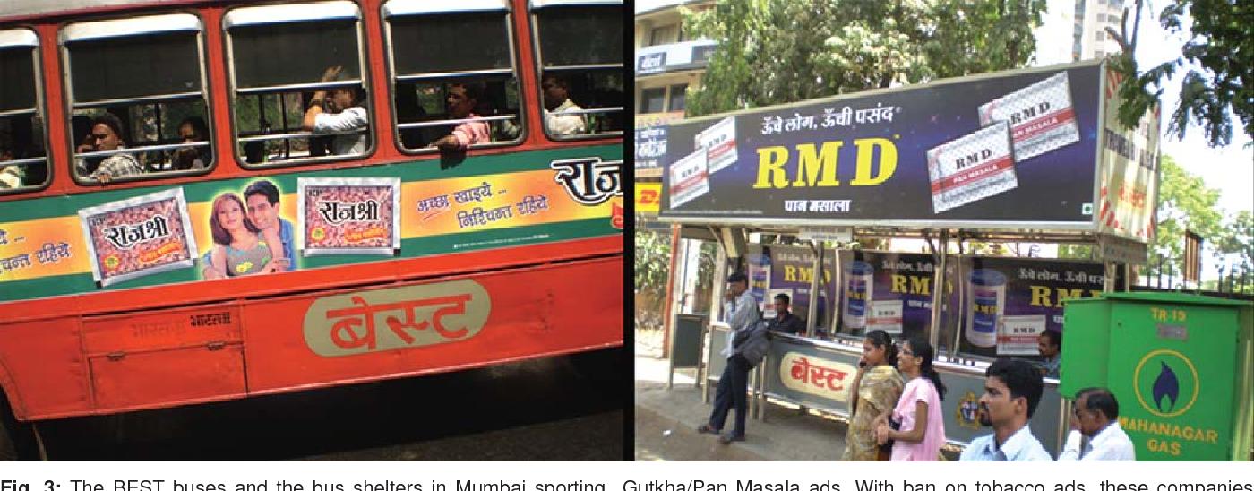 PDF] Areca Nut or Betel Nut Control is Mandatory if India Wants to