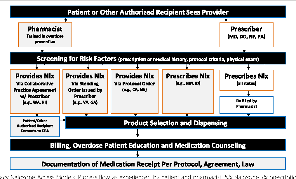 Figure 1 from Orienting patients to greater opioid safety: models of