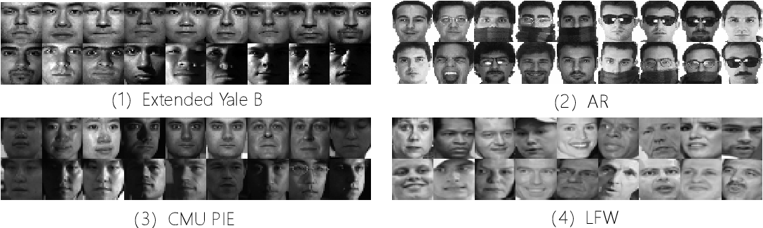 Figure 3 for Low-Rank Discriminative Least Squares Regression for Image Classification