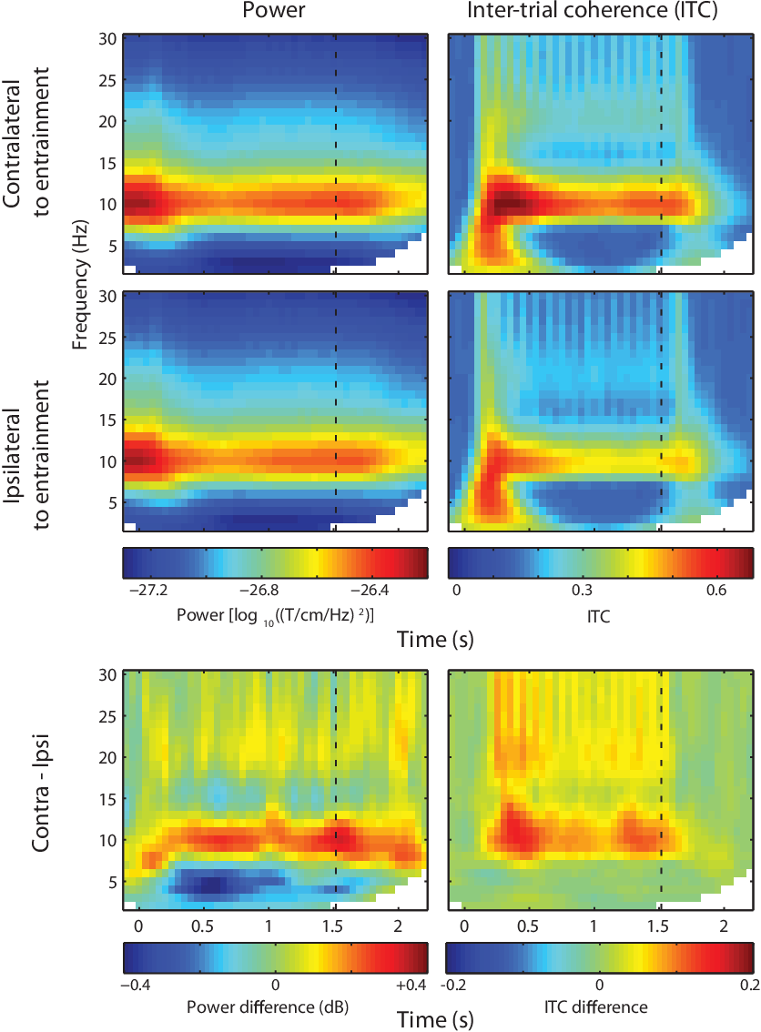 Figure 2.5: Frequency-domain analysis results. Time-frequency representations of power (le ) and inter-trial coherence (ITC; right), shown for sensors contralateral (top) and ipsilateral (middle) to the rhythmic stimulation. e bottom plots show the di erence between contraand ipsilateral sensors. A persistent alpha power and ITC increase was visible for contralateral