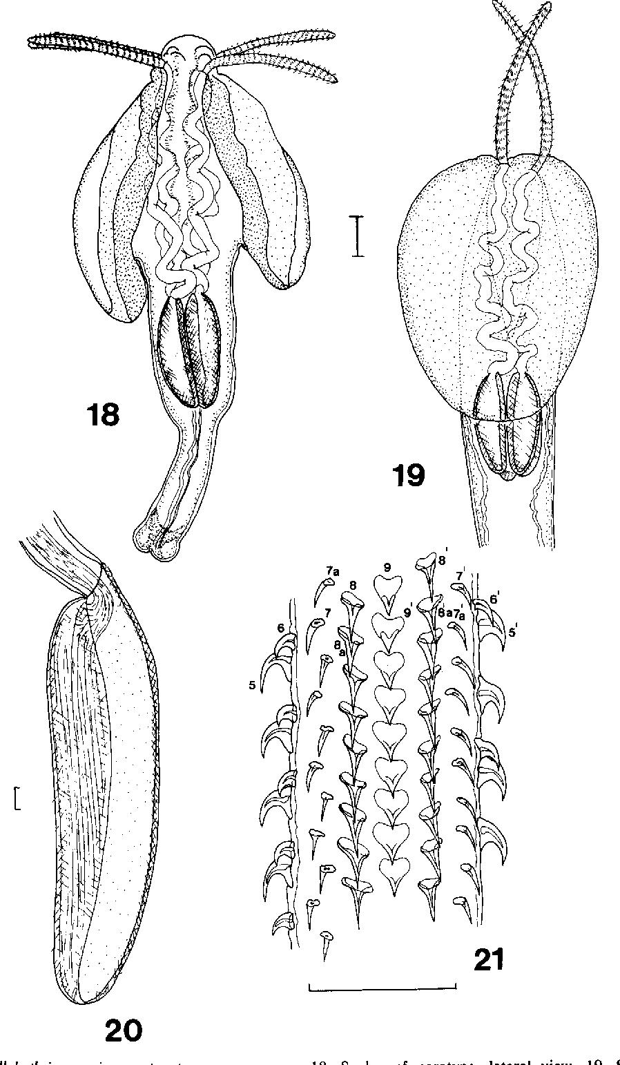 figure 18-21