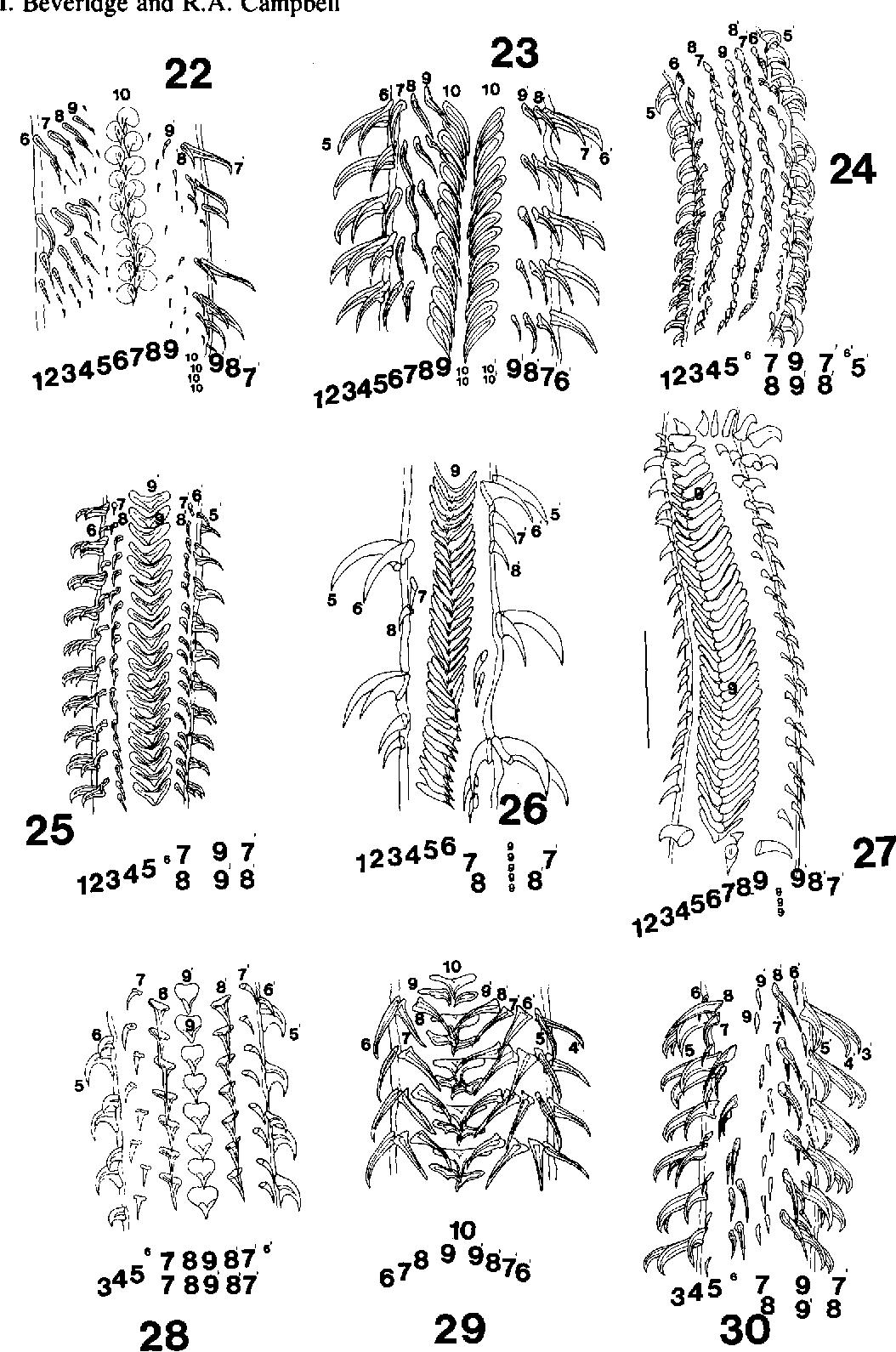 figure 22-30