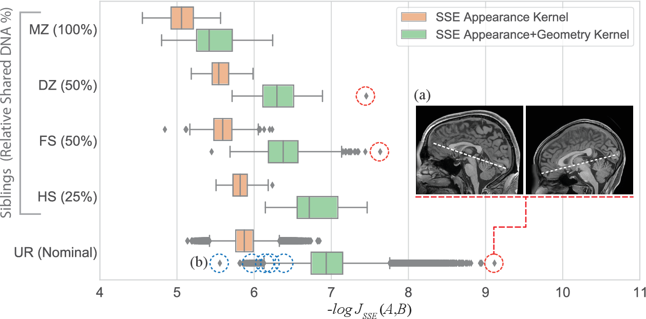 Figure 3 for Efficient Pairwise Neuroimage Analysis using the Soft Jaccard Index and 3D Keypoint Sets