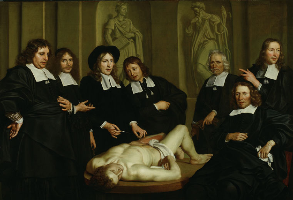 """Anatomy Lesson of Frederik Ruysch"""" of 1670: A Tribute to Ruysch\'s ..."""