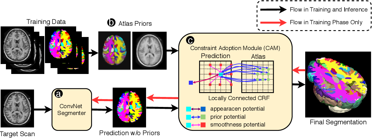 Figure 1 for Atlas-aware ConvNetfor Accurate yet Robust Anatomical Segmentation
