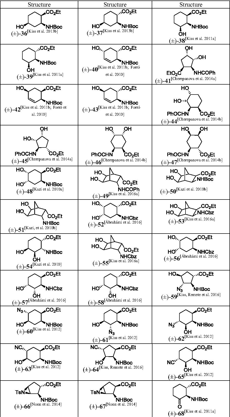 Highly functionalized cyclic β-amino acid moieties as promising