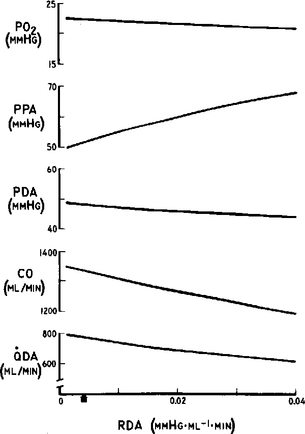 Figure 4 From Mathematical Model Of Fetal Circulation And Oxygen