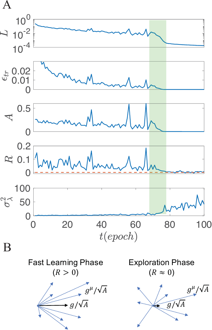 Figure 1 for Phases of learning dynamics in artificial neural networks: with or without mislabeled data