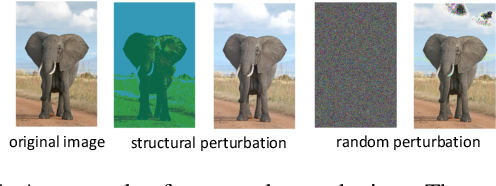 Figure 1 for Structure Matters: Towards Generating Transferable Adversarial Images