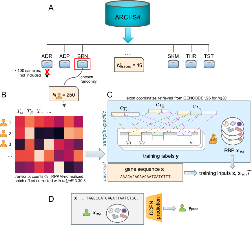 Figure 3 for RNA Alternative Splicing Prediction with Discrete Compositional Energy Network