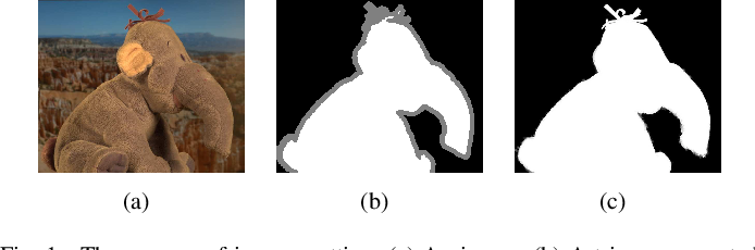 Figure 1 for A Hierarchical Image Matting Model for Blood Vessel Segmentation in Fundus images