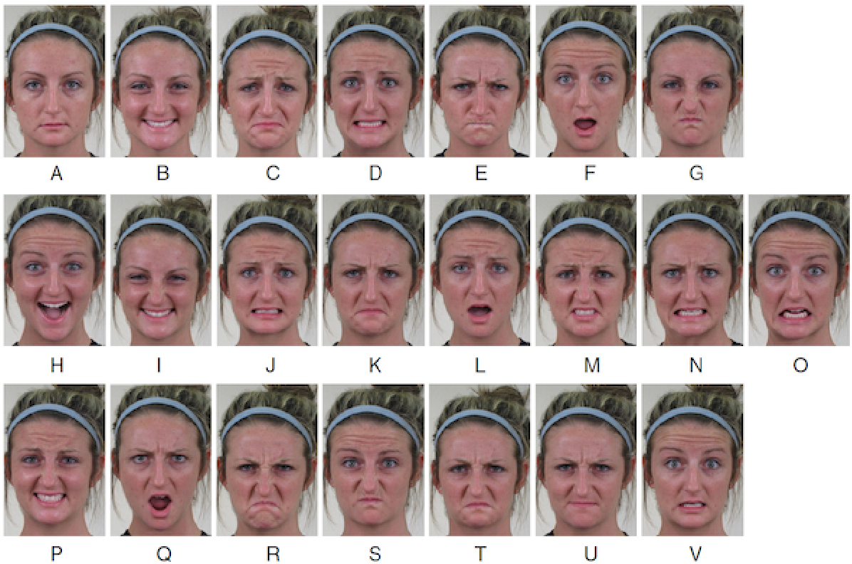 Figure 1 for Interpretable Deep Neural Networks for Dimensional and Categorical Emotion Recognition in-the-wild