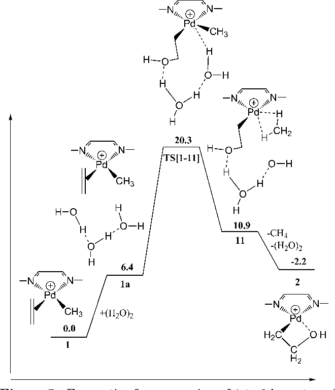 Possible Side Reactions Due To Water In Emulsion Polymerization By