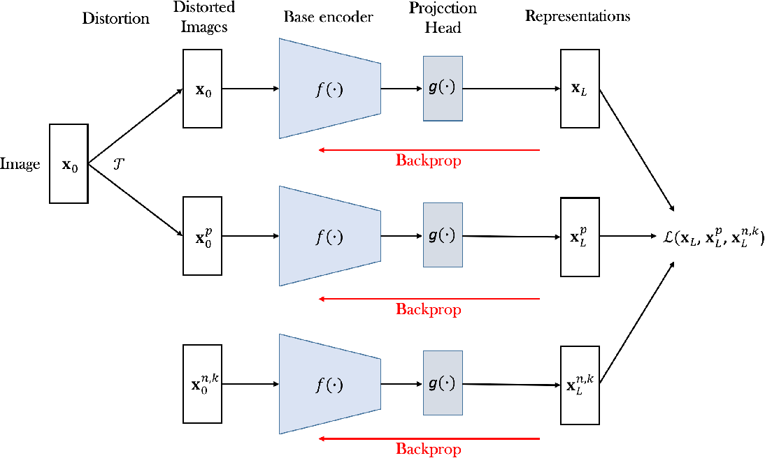 Figure 3 for Biologically Plausible Training Mechanisms for Self-Supervised Learning in Deep Networks