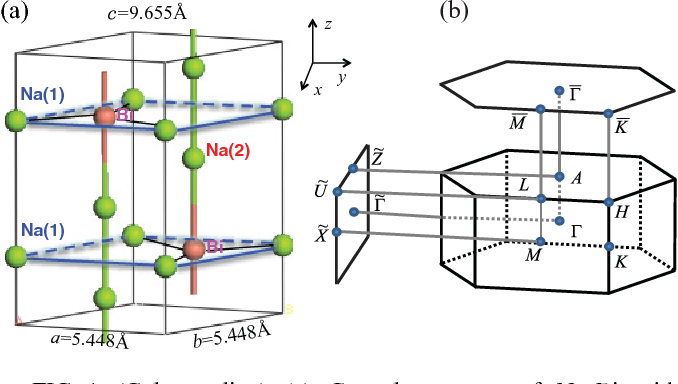 FIG. 1. (Color online) (a) Crystal structure of Na3Bi with P63/mmc symmetry. Na(1) is at 2b position ±(0,0, 14 ), and Bi is at 2c position ±( 13 , 23 , 14 ). They form honeycomb lattice layers. Na(2) is at 4f position ±( 13 , 23 ,u) and ±( 23 , 13 , 12 + u) with u = 0.583, threading Bi along the c axis. (b) Brillouin zone of bulk and the projected surface Brillouin zones of (001) and (010) planes.