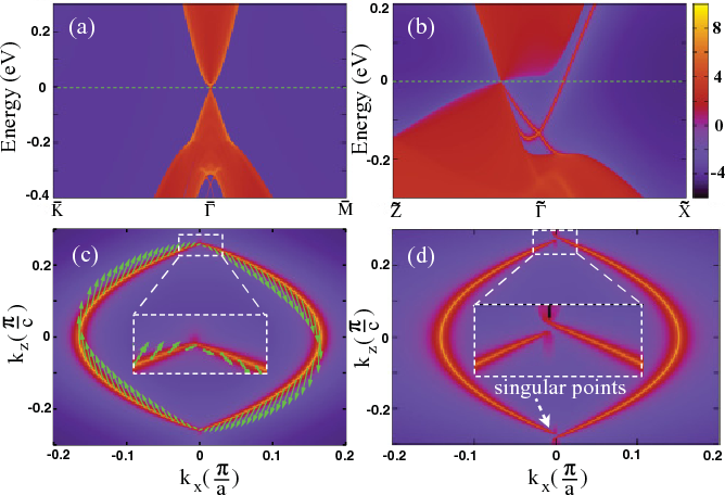 FIG. 3. (Color online) The projected surface states and their Fermi surfaces of Na3Bi. (a) and (b) The projected surface density of states for [001] and [010] surfaces, respectively. (c) The Fermi surfaces (Fermi arcs) and their spin textures (in-plane components) for the [010] surface states. (d) The Fermi arcs of the [010] surface obtained from the fitted effective Hamiltonian with additional exchange field h1 = 6 meV (see Sec. III C for details). The discontinuity around the singular Fermi points becomes now obvious (enlarged in the insets).