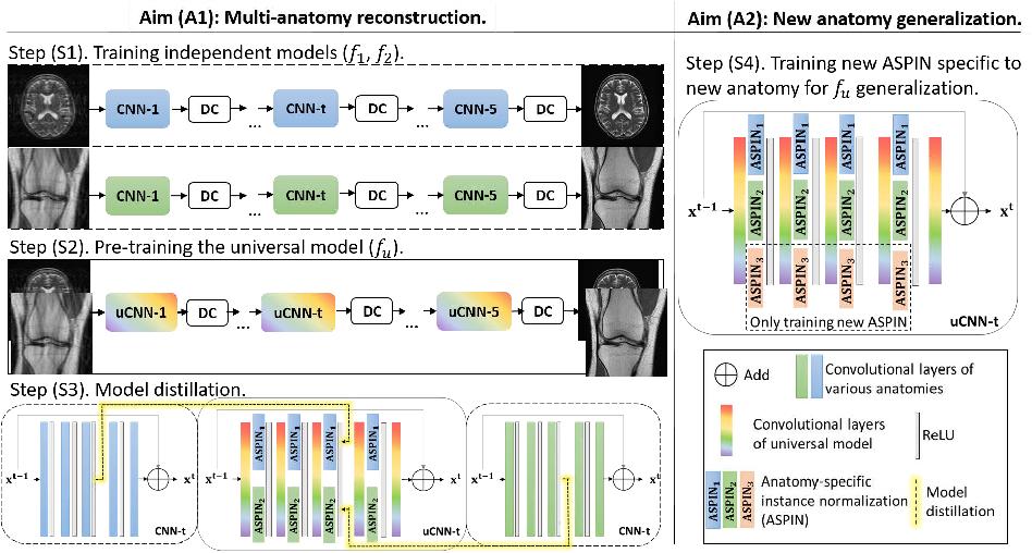 Figure 1 for Universal Undersampled MRI Reconstruction