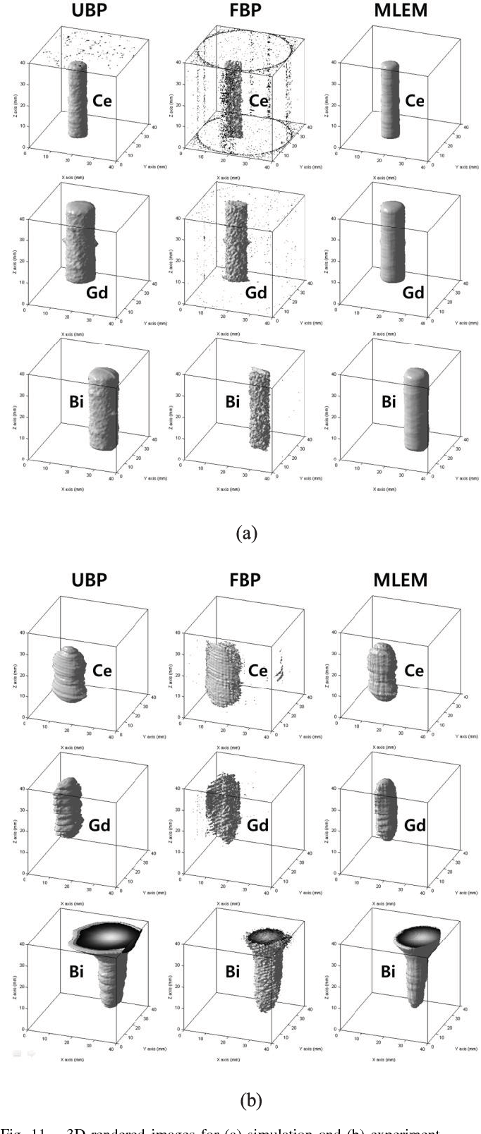 Fig. 11. 3D rendered images for (a) simulation and (b) experiment.