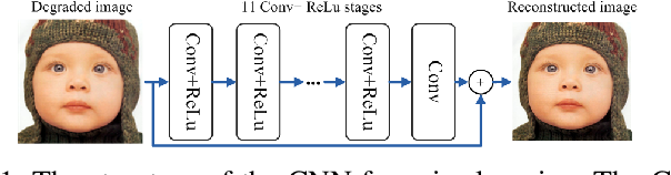 Figure 1 for Learning Hybrid Sparsity Prior for Image Restoration: Where Deep Learning Meets Sparse Coding