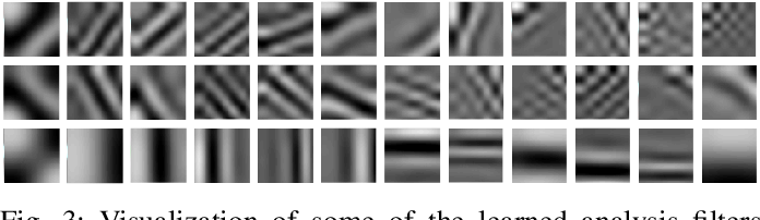 Figure 4 for Learning Hybrid Sparsity Prior for Image Restoration: Where Deep Learning Meets Sparse Coding