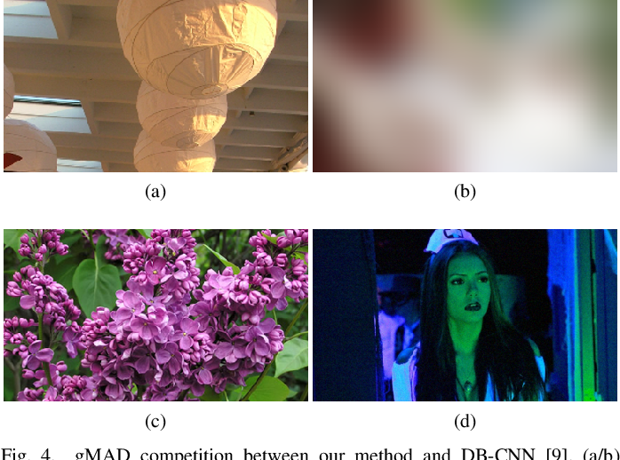 Figure 4 for Learning to Blindly Assess Image Quality in the Laboratory and Wild
