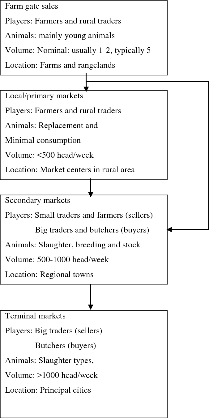 PDF] Assessment of the Performance of the Goat Marketing
