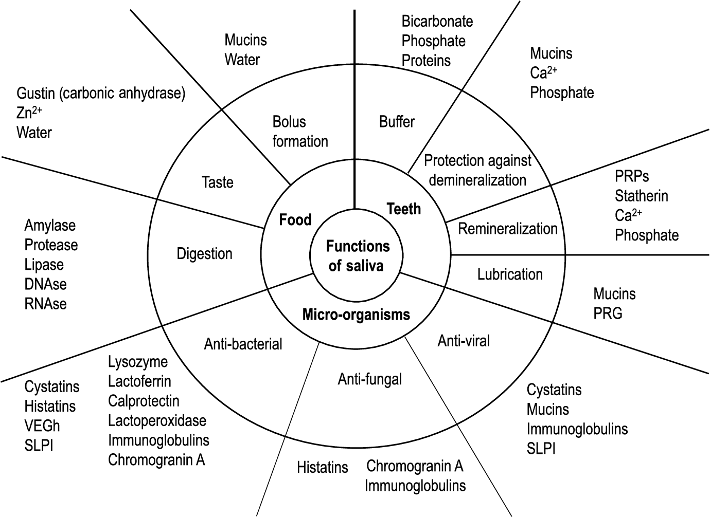 figure 1 schematic presentation of the main functions of saliva in relation  to its constituents