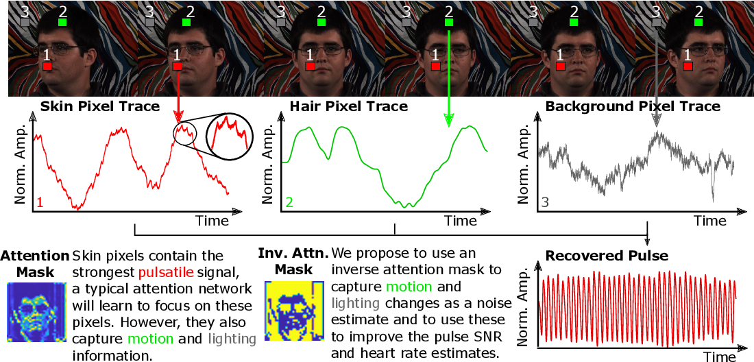 Figure 1 for The Benefit of Distraction: Denoising Remote Vitals Measurements using Inverse Attention
