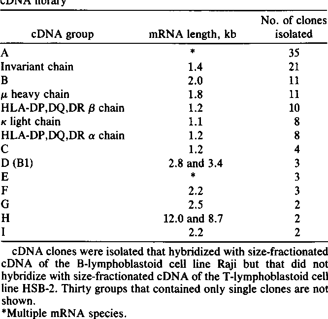PDF] Isolation and structure of a cDNA encoding the B 1 ( CD 20