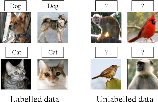 Figure 1 for AutoNovel: Automatically Discovering and Learning Novel Visual Categories
