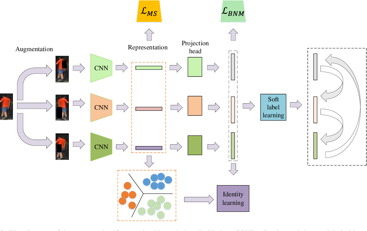 Figure 3 for SSKD: Self-Supervised Knowledge Distillation for Cross Domain Adaptive Person Re-Identification