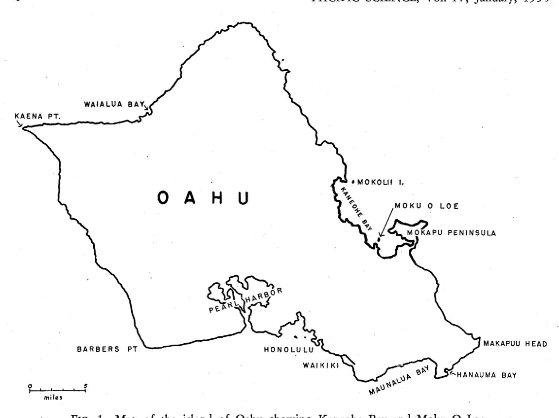 Figure 1 from The Sponges of Kaneohe Bay, Oahu - Semantic Scholar on map of foster village, map of kalama valley, map of hawaii, map of windward oahu, map of island of oahu, map of haleiwa, map of pali lookout, map of north shore maui, map of hilo, map of kapolei, map of black point, map of wahiawa, map of kailua, map of kewalo basin, map of aiea heights, map of honolulu, map of pauoa valley, map of mililani, map of kahului, map of kapahulu,