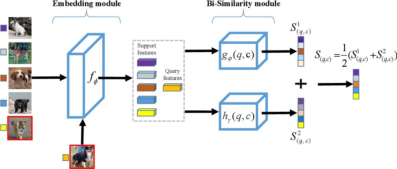 Figure 2 for BSNet: Bi-Similarity Network for Few-shot Fine-grained Image Classification
