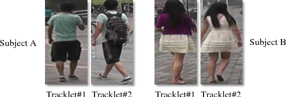 Figure 4 for Video-Based Pedestrian Attribute Recognition