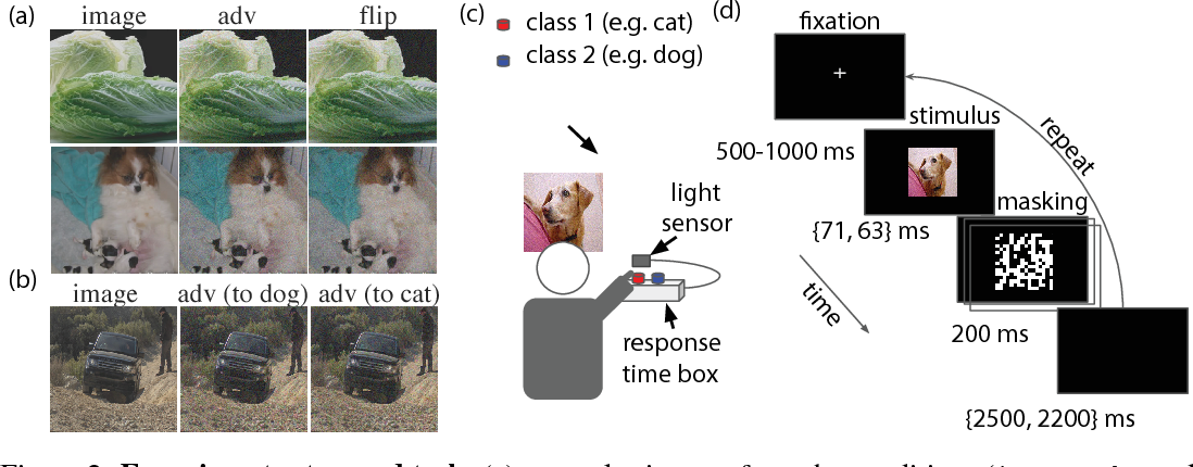 Figure 2 for Adversarial Examples that Fool both Computer Vision and Time-Limited Humans