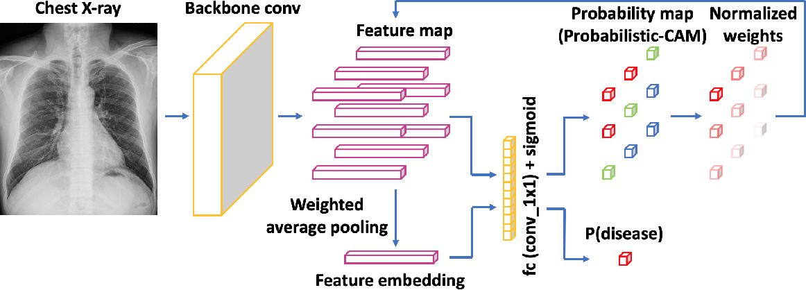 Figure 2 for Weakly Supervised Lesion Localization With Probabilistic-CAM Pooling